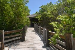 Environmental Education Center at Dr. Von D. Mizell-Eula Johnson State Park