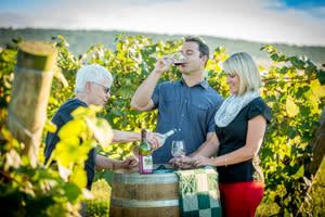 Wine Tasting in Hershey and Harrisburg