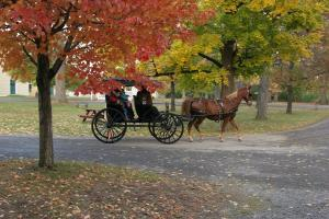 Horse and carriage travel around the Granger Homestead and Carriage House Museum