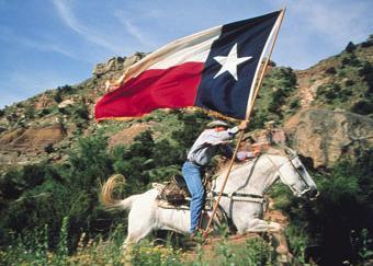 Horse Texas Flag