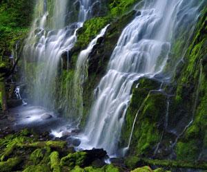 Lower Proxy Falls By Greg Leif