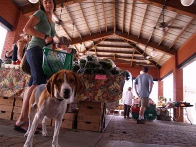 Ybor Saturday Market