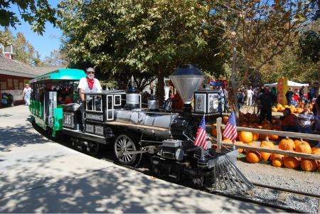 Take a train ride through the pumpkin patch at the Irvine Park Railroad's Pumpkin Patch.