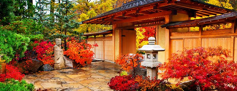 fall at Anderson Japanese Gardens