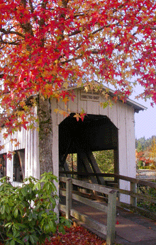 Centennial Bridge in Fall by Janice D Emidio