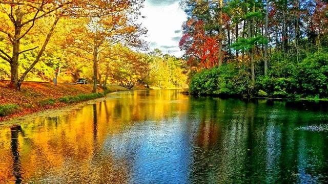 Fall River Color - Fall Photo