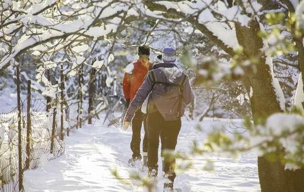 UW-Madison Arboretum Walk: Winter Wonders.