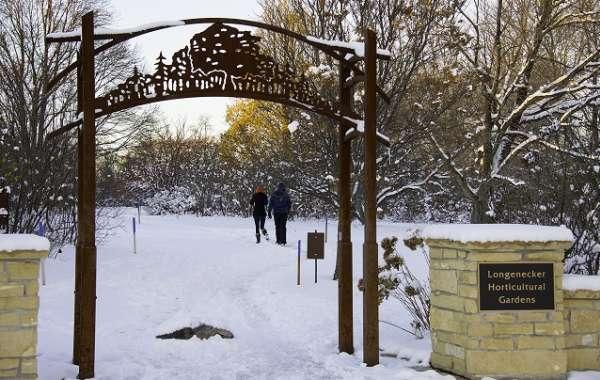 UW-Madison Arboretum Night Walk: Crusted Snow Moon.