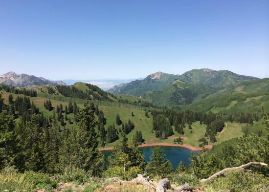 Crest Trail View