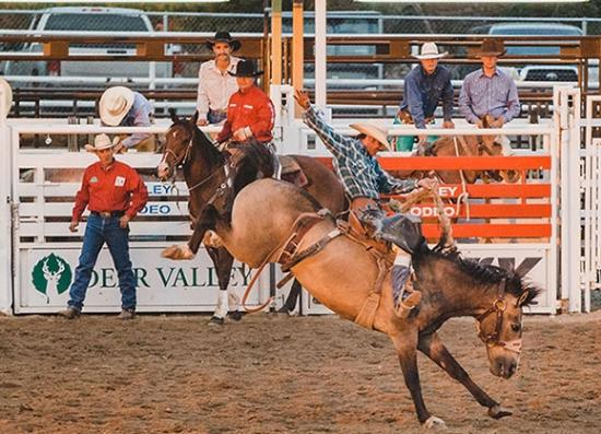 Summit County Rodeo