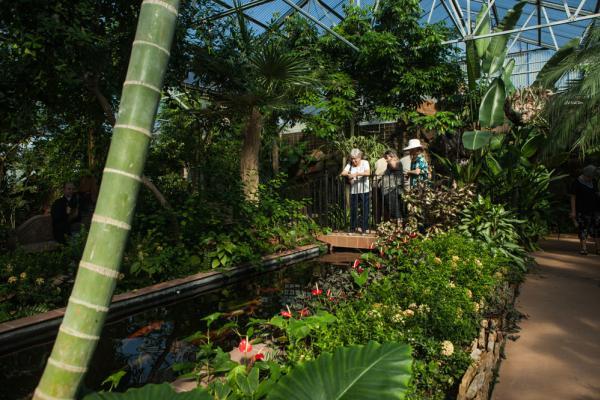Warren Loose Conservatory in Beaumont, Texas