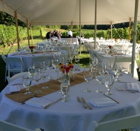 Dining in the Vines