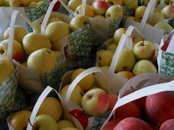 Apples at Schmuckers