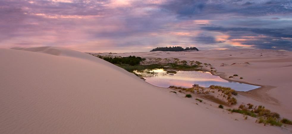 Image result for Oregon dunes