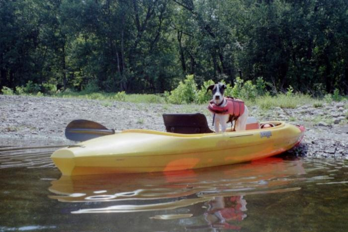 Pet Friendly Attractions in the Pocono Mountains