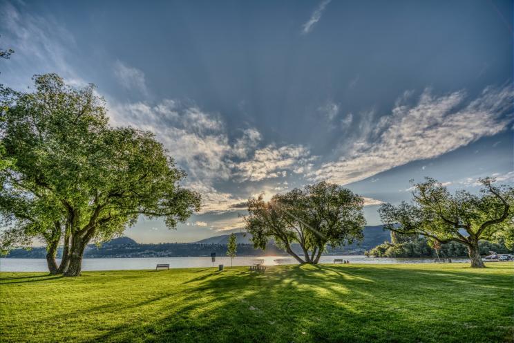 Kinsmen Park | Eoin Carey