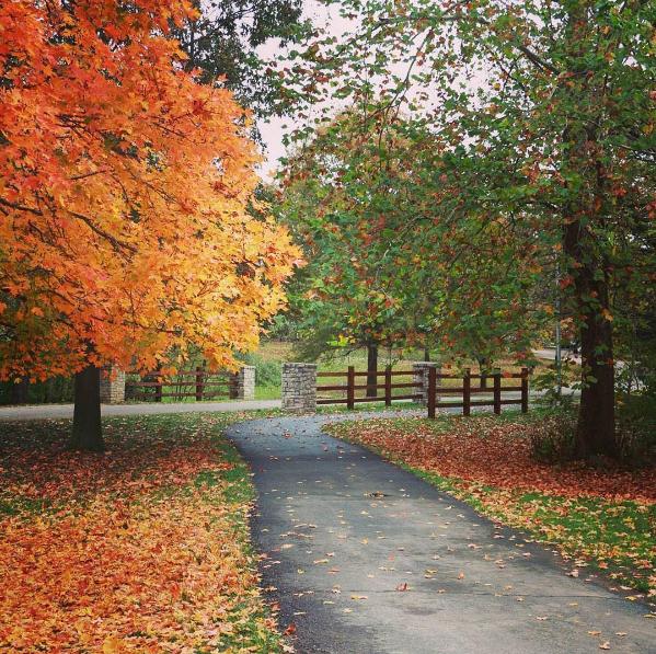 Instagram Fan Photo October