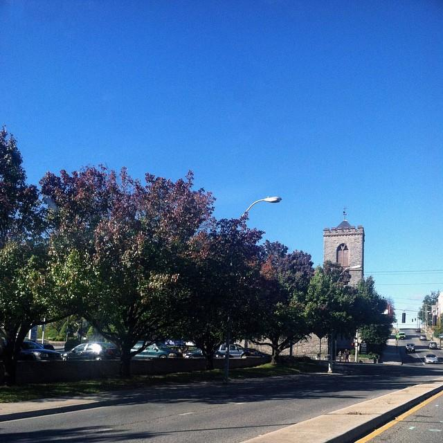 Fall Downtown Roanoke Trees - Fall Photo