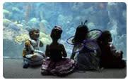 Florida Aquarium's Guppyween