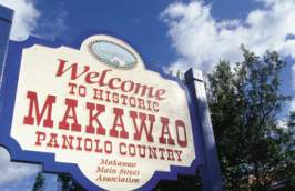 Welcome to Makawao, Maui Sign
