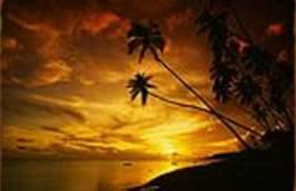 Discover Molokai