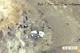 True OVERviews-Bisti Wilderness Fossils