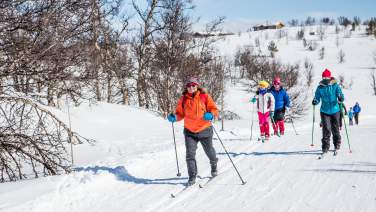 Happy cross country skiers in Geilo