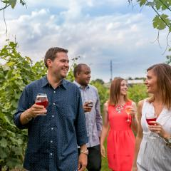 Couples Strolling through the Vineyard and Brewery at Hershey