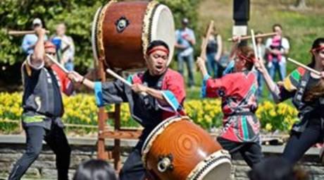 SPRING FESTIVALS - JAPANESE CHERRY BLOSSOM FESTIVAL