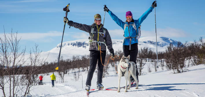Two cross country skiers with a dog in Geilo