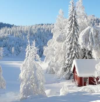 Winter in Vegårshei Norway