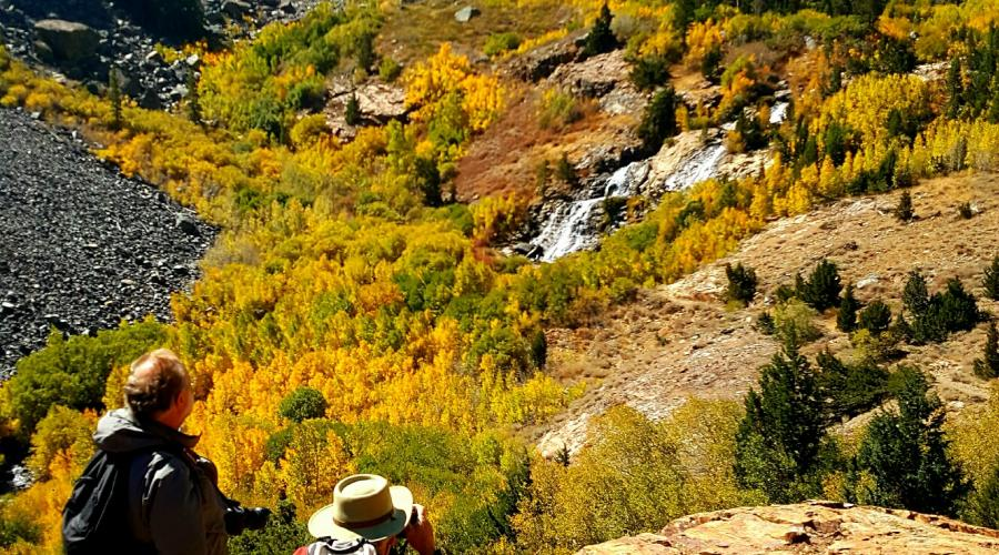 Lundy Fall Fall Color