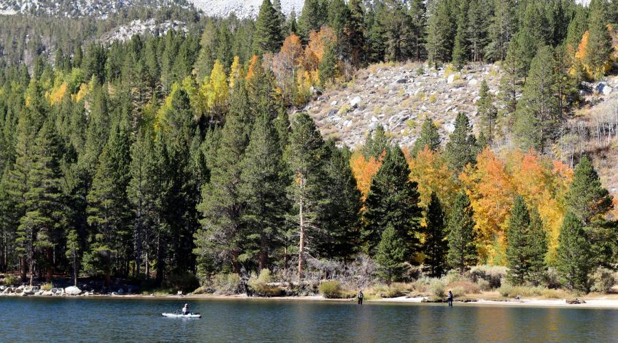 Rock Creek Lake Fall Colors