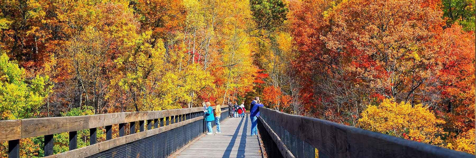 Things To Do In Fall Laurel Highlands Pa