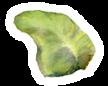 Lanai