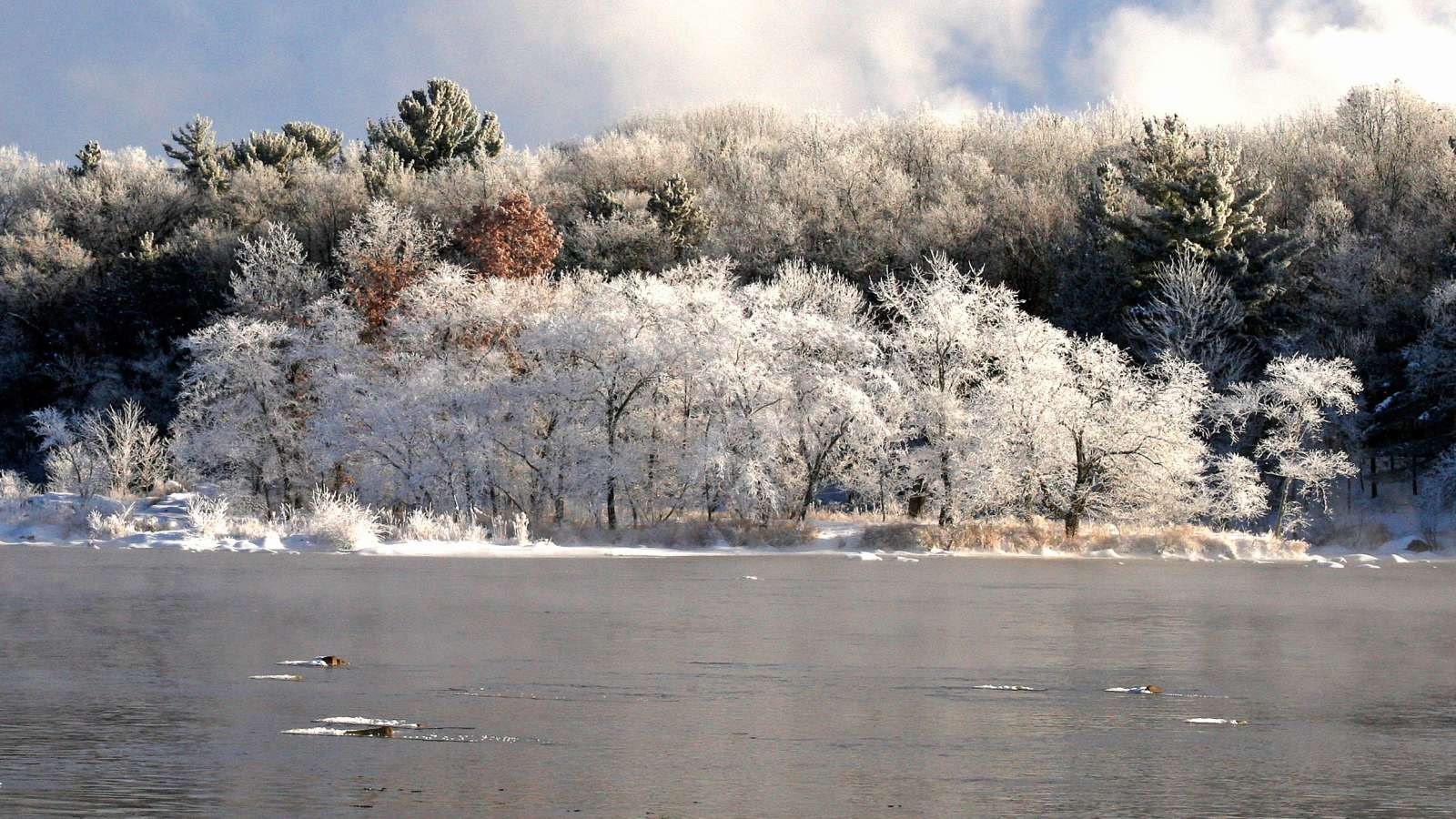 Winter views in the Stevens Point Area