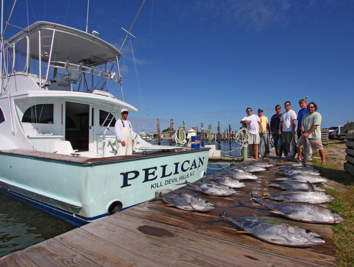 The outer banks north carolina offshore and inshore for Fishing charters outer banks