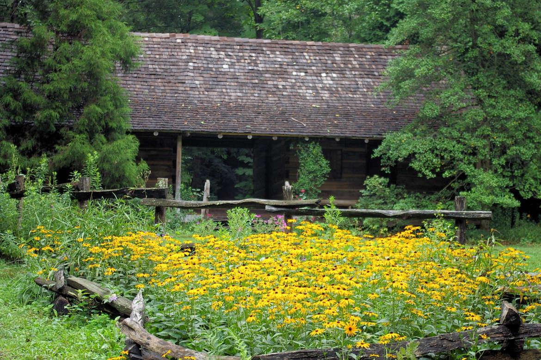 Asheville Botanical Gardens Trails