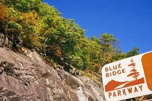 Fall Foliage ESP