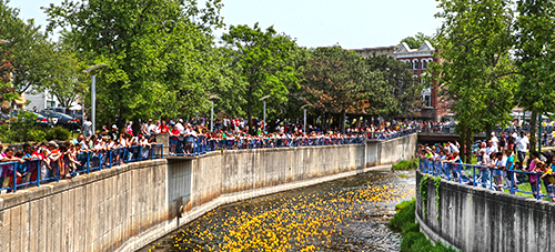 Duck Derby - Memorial Day - Downtown Auburn
