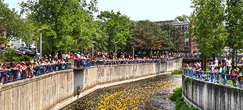 Duck Derby - Memorial Day - Downtown Auburn