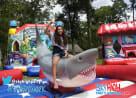 Mechanical Shark For Rent