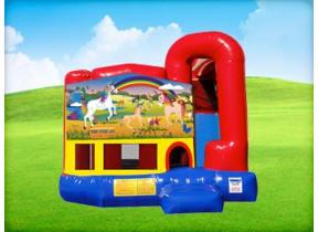 Unicorn 4in1 Combo w/ Wet or Dry Slide