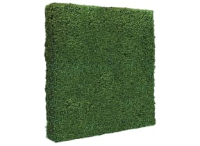 7' x 7' Boxwood Backdrop