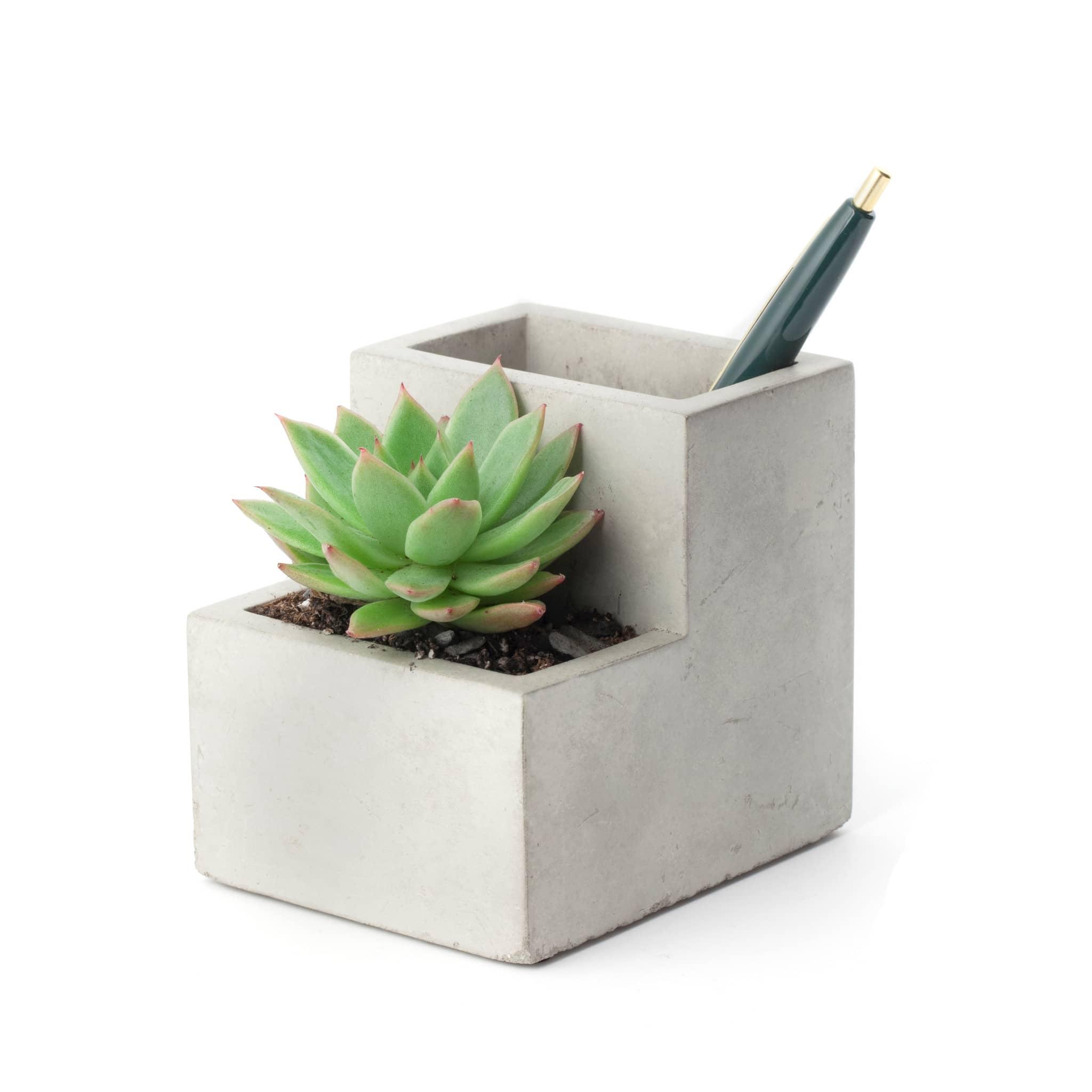 Kikkerland Design Small Concrete Desktop Planter
