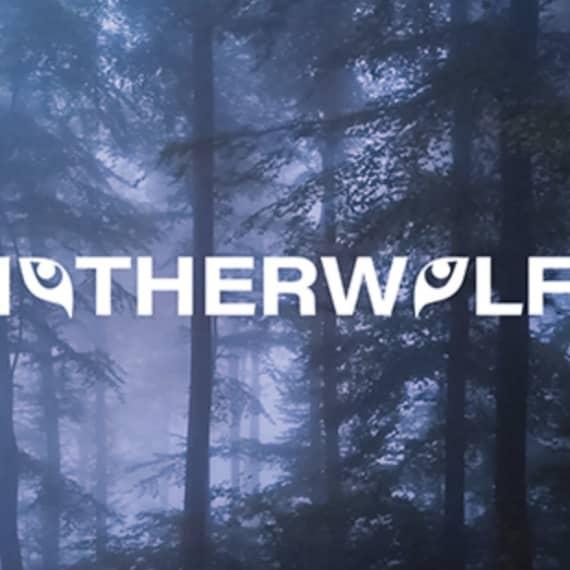 Motherwolf LLC