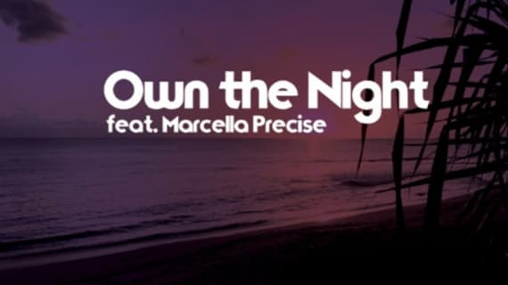 """The Tropixx's """"Own The Night (feat. Marcella Precise)"""" hits 2M streams on Spotify"""