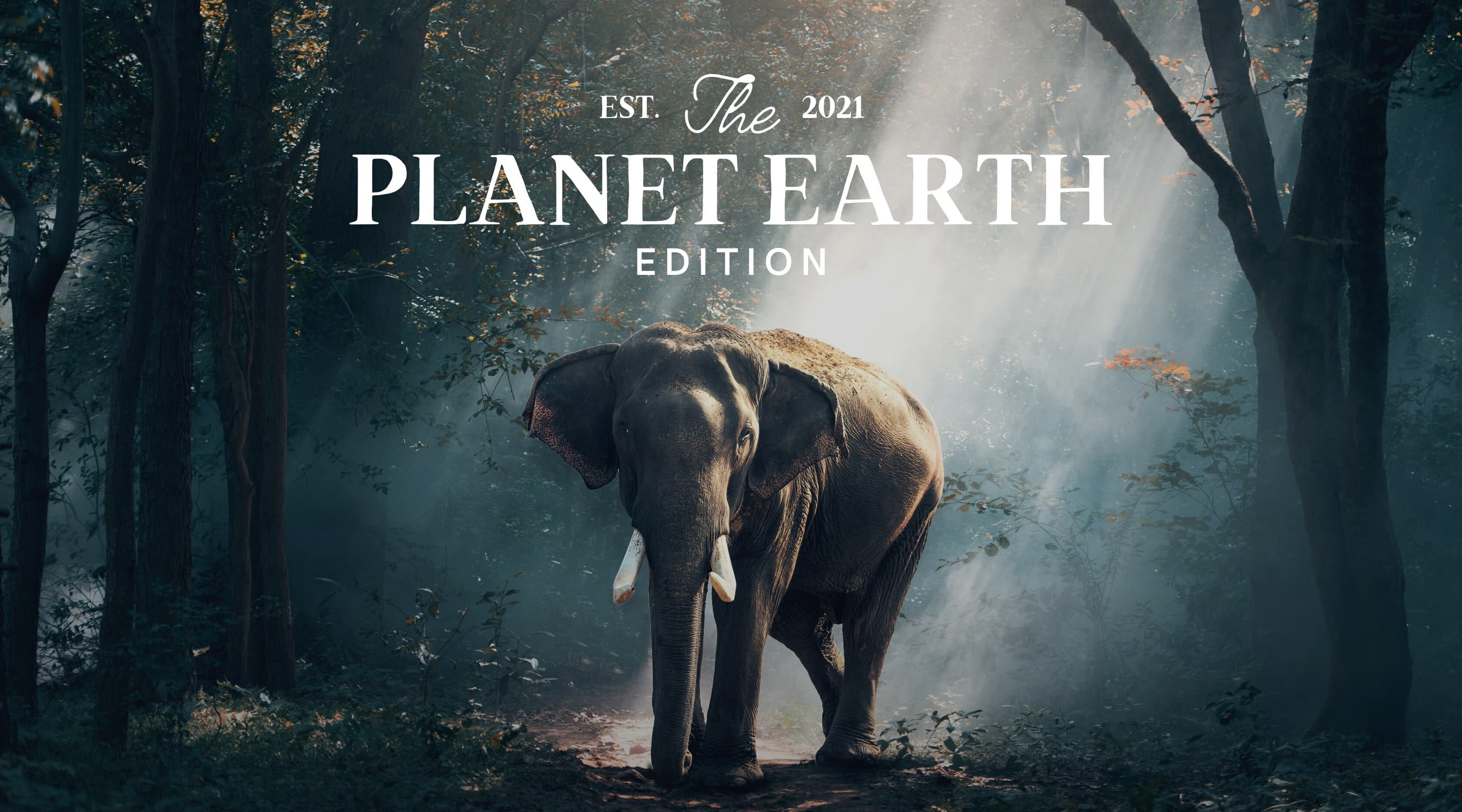 Documentary Special: Our Planet