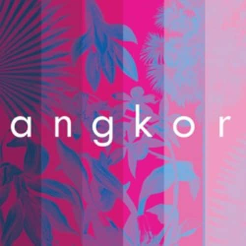 Angkor (feat. Welshly Arms) - Single