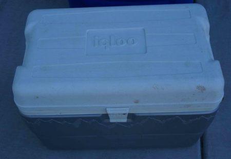 MaxCold 50 qt Cooler